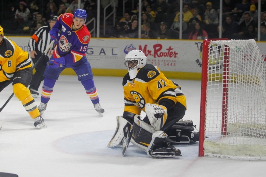 Masked man Malcolm Subban in action with Providence Bruins.
